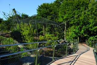 "New Animal Enclosure gives Visitors a ""Safari Feeling"""